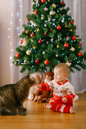 Baby girl in a red-and-white knitted costume is petting a cat in front of a Christmas tree