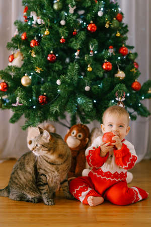 Baby is eating an apple while sitting next to a cat in front of a Christmas tree