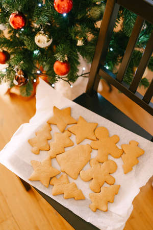 A close-up of a set of herringbone, man, bell and star inbier cookies on white parchment for baking near a decorated Christmas tree.