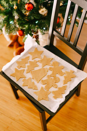Raw gingerbread cookies on a baking sheet. Imagens - 156870504
