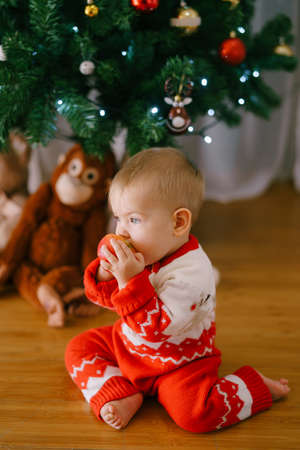 Baby girl in a red-and-white knitted bodysuit is biting on an apple in front of a Christmas tree