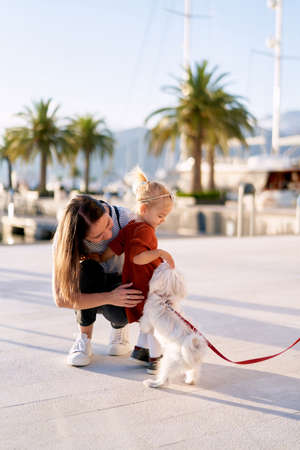 Woman and her toddler are petting a small white dog on a boat pier