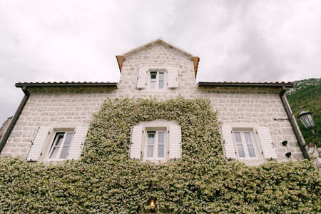 House with windows and open shutters with jasmine curling up the wall. Imagens