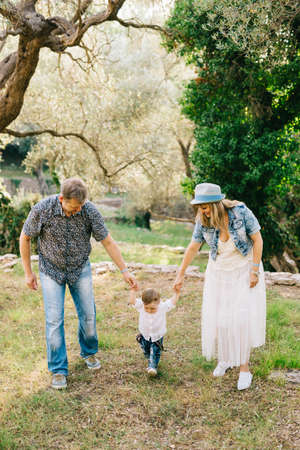 Happy family - mom and dad hold little son by the arms in the olive grove Banque d'images
