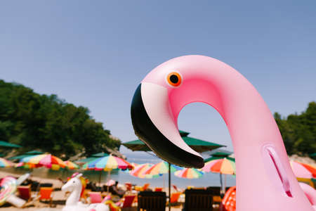 Inflatable pink flamingo on the royal beach in Przno against the background of green trees Imagens
