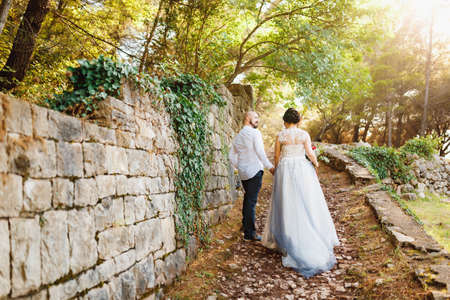 The bride and stand holding hands near the old stone wall among the trees in an olive grove, back view Imagens