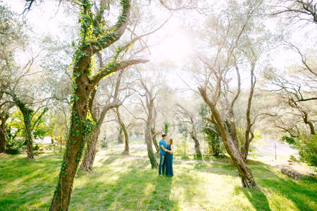 Man hugs pregnant woman in a beautiful park of green olive trees entwined with ivy on a sunny day
