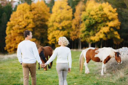 Couple walks on the lawn in the autumn forest, holding hands. Horses graze on the lawn. Back view Banco de Imagens