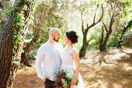 The bride and groom with a bouquet stand hugging among the trees in an olive grove Banco de Imagens