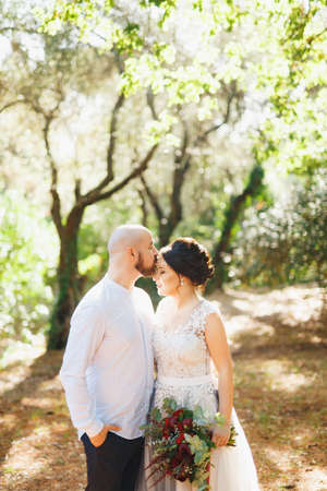 The bride and groom with a bouquet stand hugging among the trees in an olive grove, the groom kisses the bride on the forehead