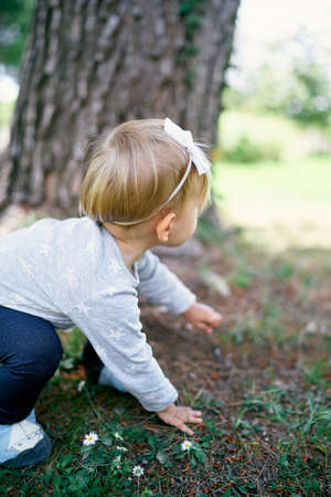 Baby squatted down and looked out from behind a tree in a green park. Back view