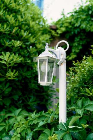 White lantern near the house among the bushes of greenery