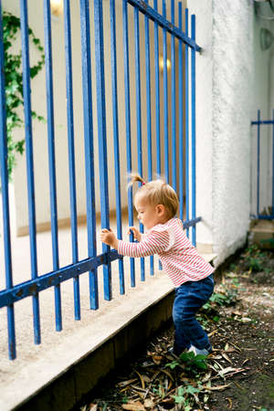 Little girl stands near a metal fence and holds on to it with her hands