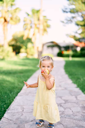 Little girl stands on a paved path in the park and gnaws an apple Banque d'images
