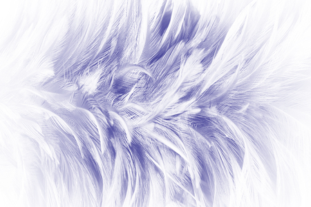 purple color trends feather texture abstract background Archivio Fotografico