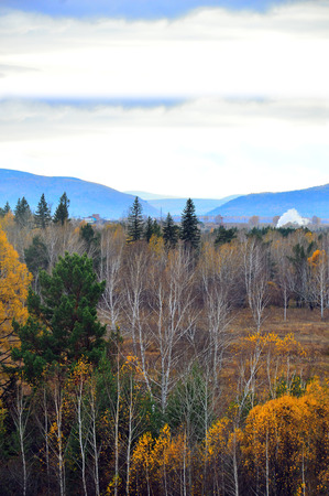 Autumn landscape. Wild forest against the blue distant mountains. Beautiful sky. Russia, Eastern Siberia. Vertical photo