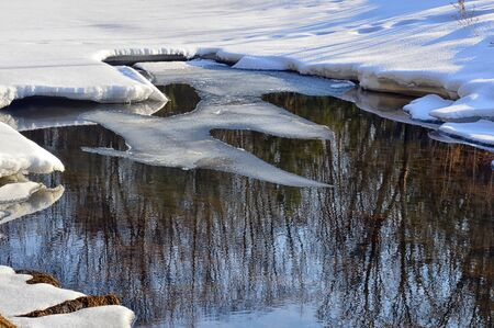 Spring puddles. Photo project. Thawing on the stream. Trees and bushes are reflected in the water. Close up. Archivio Fotografico