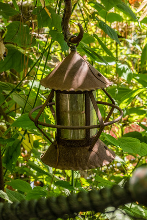 lamp shade: abandoned rusty street lamp hidden in foliage with cylinder shade