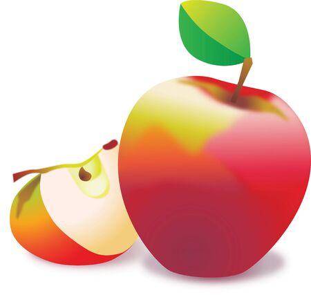 Red Apple in vector