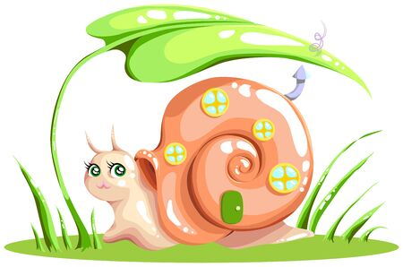 windows and doors: snail with a house for your design Stock Photo