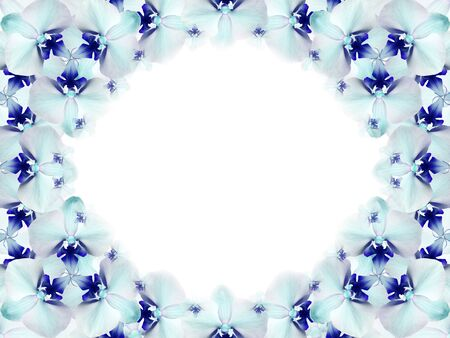 Rahmen Von Blumen. Blaue Und Weiße Blumen Des Türkises Traten In ...