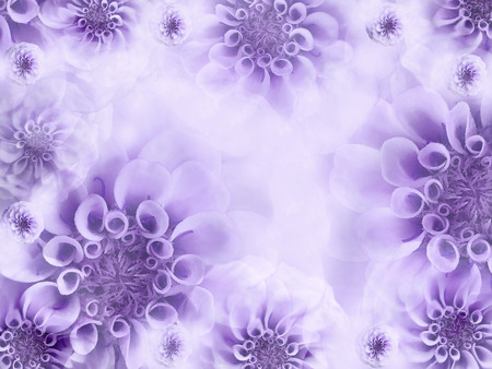 Floral white violet beautiful background wallpapers of light floral white violet beautiful background wallpapers of light purple flowers flower composition mightylinksfo