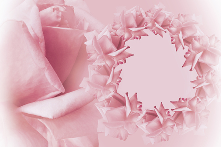 Floral pink white beautiful background flower composition stock floral pink white beautiful background flower composition frame of pink flowers roses on mightylinksfo