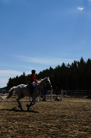 Equestrian sport - a young girl is riding a horse.
