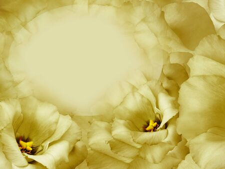Floral yellow background. Flowers and petals of a yellow roses. Place for text. Close-up. Nature.