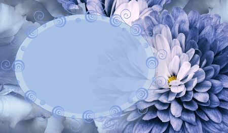 Floral blue background. Flower chrysanthemum and petals of a blue roses. Place for text. Close-up. Nature
