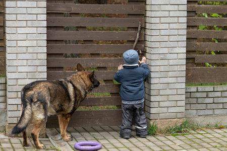 A boy opens a wooden gate next to a shepherd