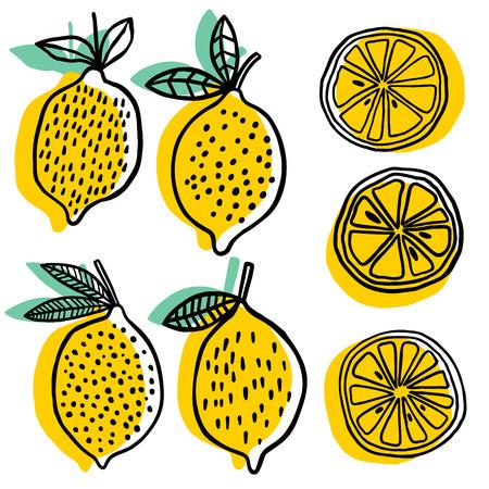 Whole lemon and slice lemon illustration on white background.