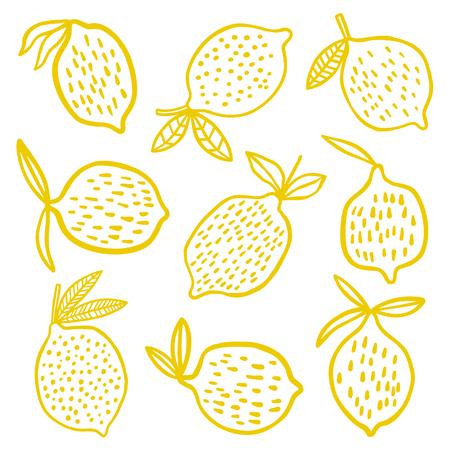 Lemon with leaf in different position illustration on white background. Illustration