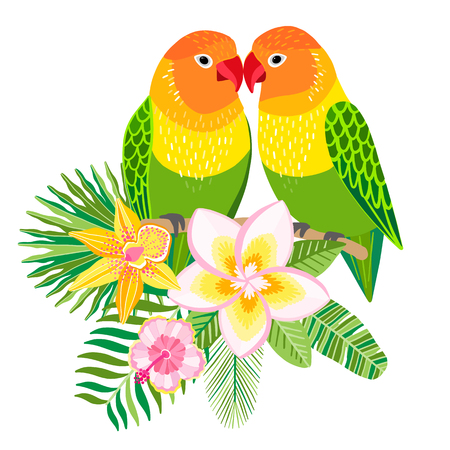 Vector lovebirds parrots. Tropical bird illustration Stock Illustratie