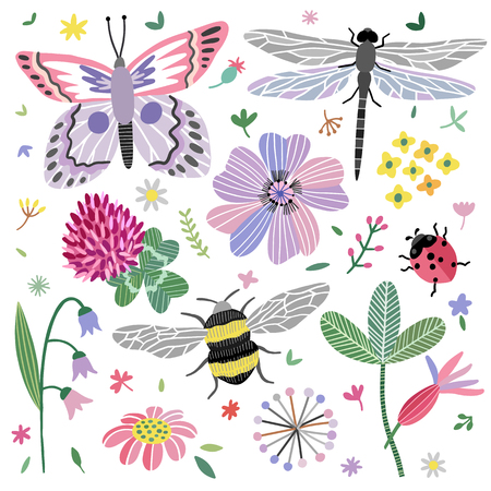Vector summer meadow. Wild flowers, butterfly, dragonfly, bee set