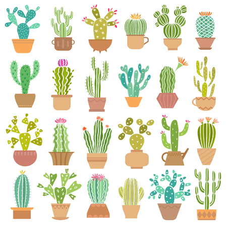 Cactus in pot vector illustration isolated on white Illustration