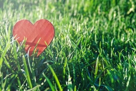 red paper heart against green grass in sun flare for eco design 스톡 콘텐츠