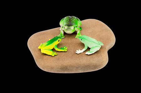 toy frogs on a stone photo