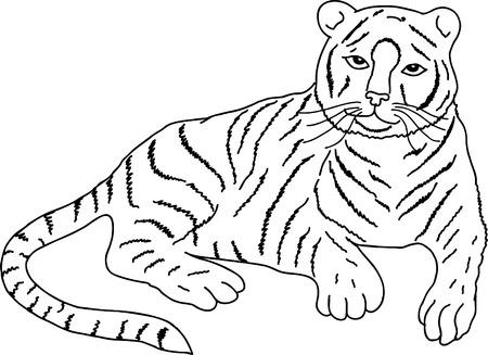 silueta tigre: dibujo de tigre a, esbozar Vectores