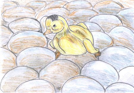 duckling hatched and sitting on eggs, drawing