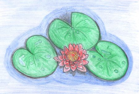beautiful lotus flower in water, colored drawing photo