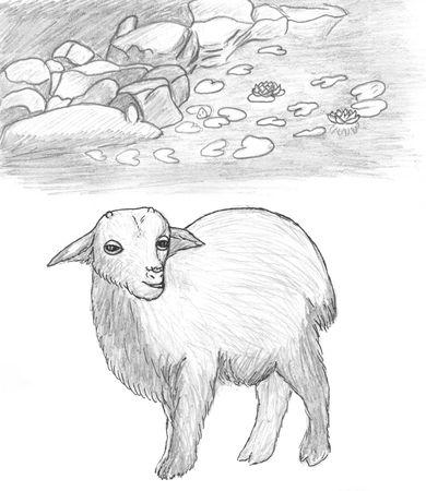 young sawhorse animal near lake, pencil drawing photo