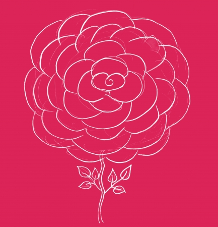 rose sketch, pencil drawing of flower on pink background photo