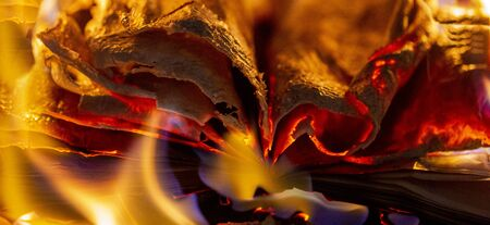 an old book burning in the fireplace, a fire in the fireplace Stock Photo