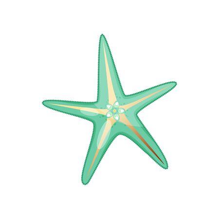 Green golden sea shell stock vector illustration isolated on white background