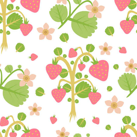 wild strawberries.jpg Vector