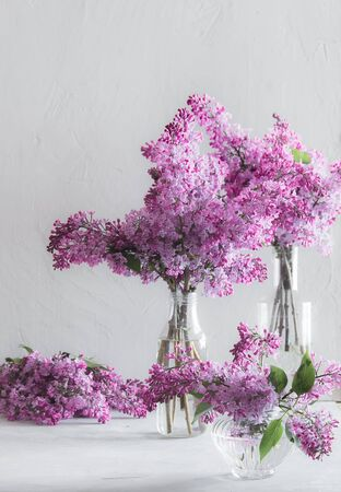bouquets of lush fresh purple lilac in glass vases. White background 免版税图像