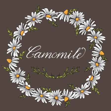 Vector vintage camomile wreath frame