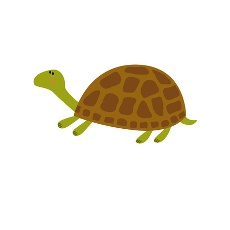 Cartoon turtle illustration Green turtle with brown shell, illustration of land turtle, Land turtle isolated