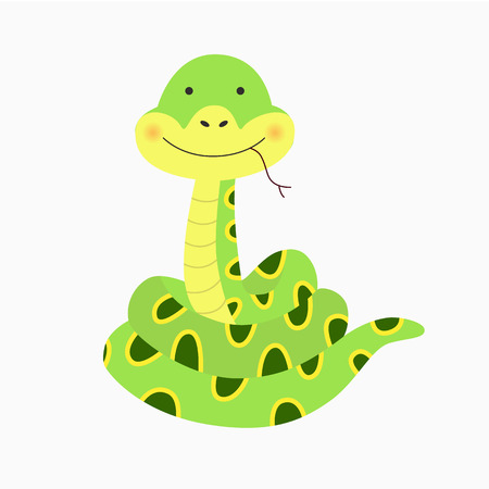 illustration of green snake on a white background. pictures for kids